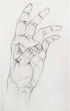 Drawing Tips hand drawing Anatomy Sketches, Anatomy Drawing, Anatomy Art, Pencil Art Drawings, Art Drawings Sketches, Hand Drawings, Hand Pencil Drawing, Contour Drawings, Sketches Of Hands