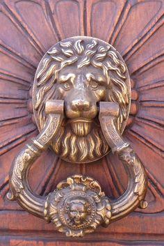 Door knocker, brass lion, San Miguel de Allende, Mexico
