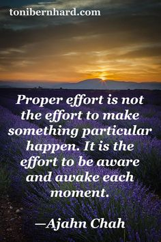 """""""Proper effort is the effort to be aware and awake each moment."""" —Ajahn Chah"""