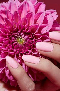 CARINA JAHN präsentiert Maniküre Tipps in der ELLE Hochzeit und sommerliche Beauty-Editorials mit Blumen Arrangements Büro Accessoires und filigranen Tüchern - News - GoSee - 10/20