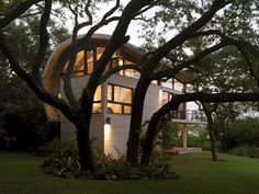 "modern curved roof stilt home ""tree house"""