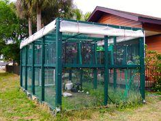 Ultimate chameleon cage.