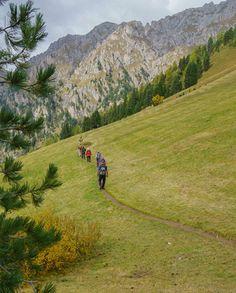 Natur pur in Südtirol erleben. #retterreisen #reisebüroretter #aktivreise #wandern (c) Wolfgang Menzel Mountains, Nature, Travel, Hiking, Naturaleza, Viajes, Destinations, Traveling, Trips