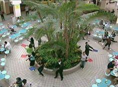 Food Court Musical 2008 ( Improv Everywhere )