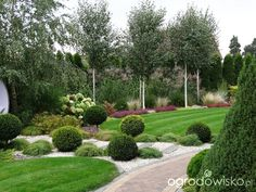 Na zielonej... trawce :) - strona 493 - Forum ogrodnicze - Ogrodowisko Outdoor Landscaping, Outdoor Decor, Garden Planter Boxes, Topiary, Stepping Stones, Garden Design, Golf Courses, Sidewalk, Landscape