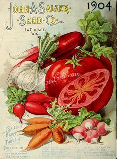 Ideas for vintage flowers pattern seed catalogs Vintage Diy, Vintage Labels, Vintage Ephemera, Vintage Signs, Vintage Postcards, Poster Vintage, Vintage Gardening, Organic Gardening, Seed Art