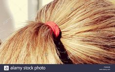 Download this stock image: Close-Up Of Blond Ponytail - FWM43B from Alamy's library of millions of high resolution stock photos, illustrations and vectors.