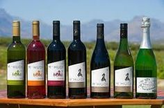 SA wines South African Wine, Africa Travel, Cape Town, Trip Planning, Farms, Wine Rack, Wines, Adventure, Bottle