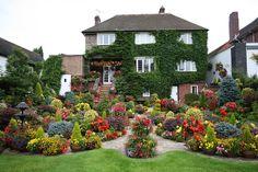 Upper garden colour (mid August) by Four Seasons Garden, via Flickr
