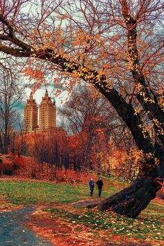 Upstate New York – Enjoy the Great Outdoors! - Upstate New York – Enjoy the Great Outdoors! Nyc Fall, Autumn In New York, Fall City, Photographie New York, Voyage New York, Autumn Scenes, Autumn Cozy, Autumn Park, Autumn Aesthetic