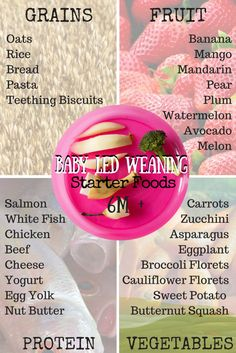 Baby Led Weaning: How to Feed Your Baby Whole Foods From the Start