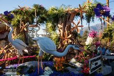 Rose Parade Floats 2016