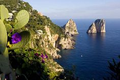 http://www.workofartists.com/images/art/lc_n_oasis-on-the-sea_capri_italy.jpg