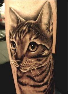 Cat tattoos are really cute.