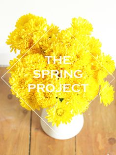 Join the Spring Project on FoundSomePaper