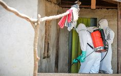 Ebola Natural Preven