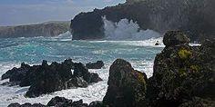 Die Azoren bieten ebenfalls spannende Taucherlebnisse - Wale & Delphine
