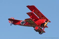 Albatros D.III | WW2Aircraft.net Forums