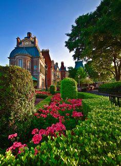 Disney, France