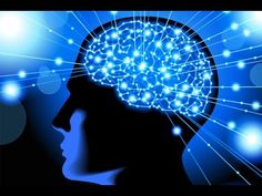 How to Rewire & Evolve Your Brain to Experience a New Reality - Dr. Joe Dispenza - YouTube