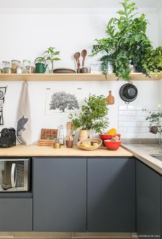 Cozinha tem armários cinza com tampo de pinus e prateleira suspensa com louças e plantas.