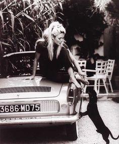 Brigitte Bardot @Lauren Lisle @Lauren Turgeon recognize this??