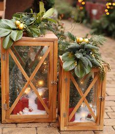 Christmas Garden, Terrarium, Home Decor, Terrariums, Decoration Home, Room Decor, Vivarium, Interior Decorating