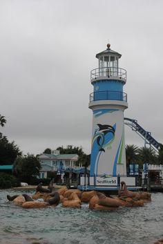 Diário de Viagem Orlando - Dia 11 - Sea World - http://www.deboramontes.blog.br/2015/10/diario-de-viagem-orlando-dia-11-sea.html