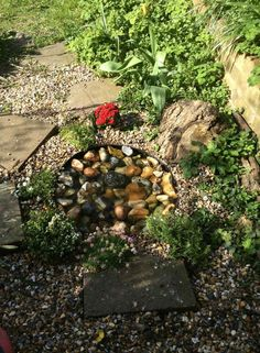 Pebble pond made out of a dustbin lid! Put a few copper coins in to stop the water turning green.