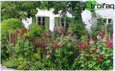 Puutarha maalaistyyliin - luontoa mökkisi