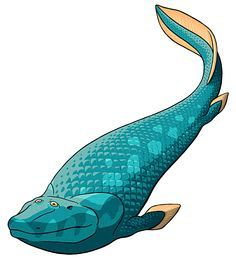 """Amphibian August #01 – Tiktaalik  We're using a fairly loose definition of """"amphibian"""" here, especially for the first few days – basically, anything in the evolutionary grade between lobe-finned fish and reptiles."""