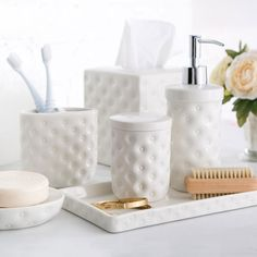 Birch Lane Embossed Porcelain Collection