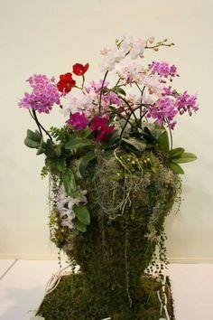 Miniature Orchids, Inside Garden, Glass Vase, Miniatures, Gardens, Plants, Home Decor, Flowers, Interior Garden
