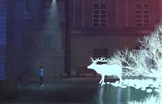 Concept, Illustration, Animals, Animales, Animaux, Animal, Illustrations, Animais