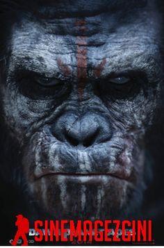 Maymunlar Cehennemi 3 izlemek isteyen ve Maymunlar Cehennemi 3 full hd izleme imkanı olan varsa linke tıklasın. Ayrıca Maymunlar Cehennemi 3 2017 izleyin.
