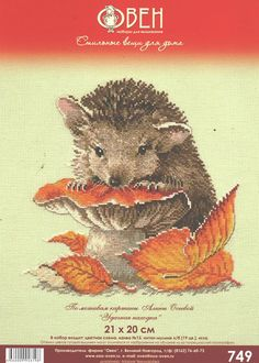 Hedgehog Cross Stitch, Cross Stitch Animals, Animals And Pets, Baby Animals, Bead Art, Needlepoint, Cross Stitch Patterns, Needlework, Wildlife