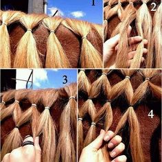 Cómo trenzar crin #caballo #horses