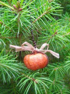 Primitive PumpkinsPUMPKIN Pod Ornaments-Set of by FolkArtWorks
