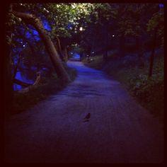 Sommarnatt på söder.