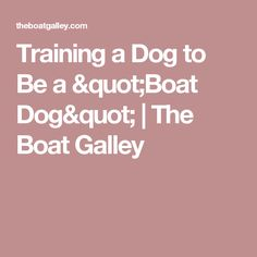 "Training a Dog to Be a ""Boat Dog"" 