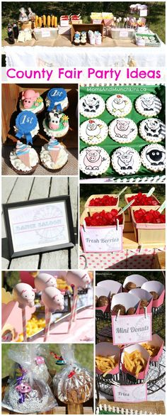 County Fair Party Ideas - ideas here perfect for a carnival party, county fair party, even some cute shabby chic party ideas. I love these cookies and cupcakes!