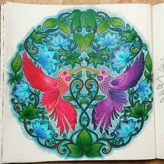 Inspiração linda para colorir vinda da  @josanycamargo ameeeeei  - . . . ✔ Use #jardimdascores nos marque ou envie direct com sua foto  . . . #esrarengizbahçe #enchantesforest #secretgarden #livro #LivrosDeColorir #livrodecolorir #Vicio #BeijaFlor #colors #coloriveis #jardimsecretotop #jardimsecreto #jardimsecretoinspire #florestaencantadatop #florestaencantada #Regrann