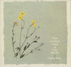 Virginia Astley, From Gardens Where We Feel Secure (LP, Happy Valley, Lp Vinyl, Vinyl Records, Rough Trade Records, Birds In The Sky, Listen To Song, Happy Valley, Art For Art Sake, Music Icon, Sound & Vision