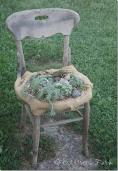 5 Ideas To Transform Old Chairs Into Beautiful Mini Gardens   Shelterness
