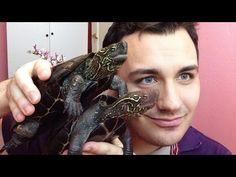 Culinária Vegana - YouTube Rings For Men, Bracelets, Youtube, Vegans, Men Rings, Bracelet, Youtubers, Arm Bracelets, Bangle