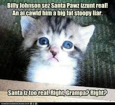 #catsmemes,funny animal pictures, cat memes, #cats, #funnycatsjust like cat, funniest animals, cat fun, cat funny, cat, cats, cat cute, cat stuff,#funny, #funnyanimals, #funnycats #dogsfunnychristmas
