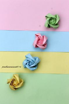 pastel color paper rose photography still life