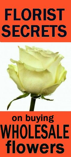 Comparison Shopping for Online Wedding Flowers - Is Wholesale COSTING You More?  Learn how to make bridal bouquets, corsages, boutonnieres, wedding reception table centerpieces and church decorations.  Buy fresh flowers and discount florist supplies.