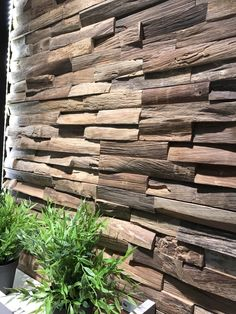 A beautiful wooden wall