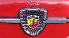 Fiat 600 | Flickr: Intercambio de fotos